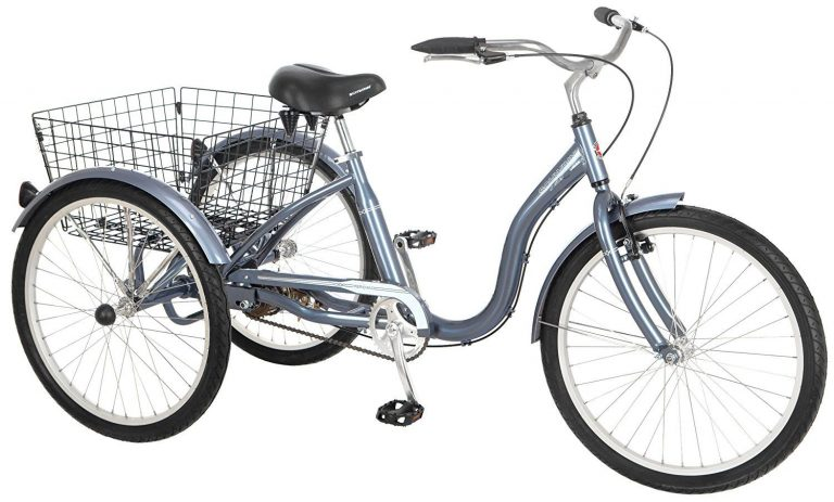 Top 10 Best Adult Trikes - Review & Buying Guide 1